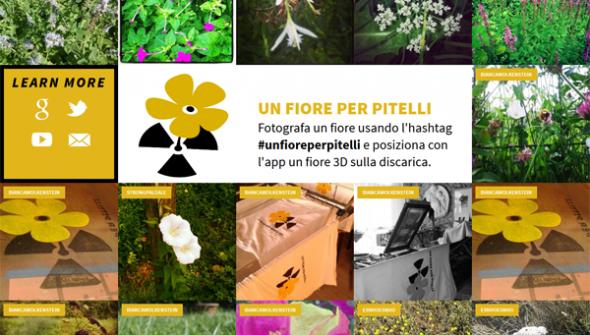 Un fiore per Pitelli